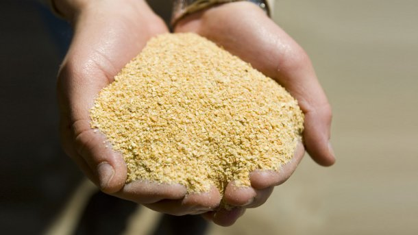 Harina de soja. United Soybean Board