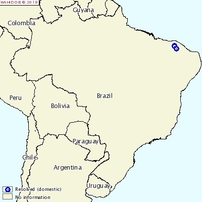 PPC en Brasil