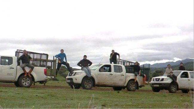 Foto 2. El trampeo mediante cajas o corrales-trampa es una opción para actuar sobre el jabalí en zonas no cazables, pero resulta cara y no siempre eficaz.