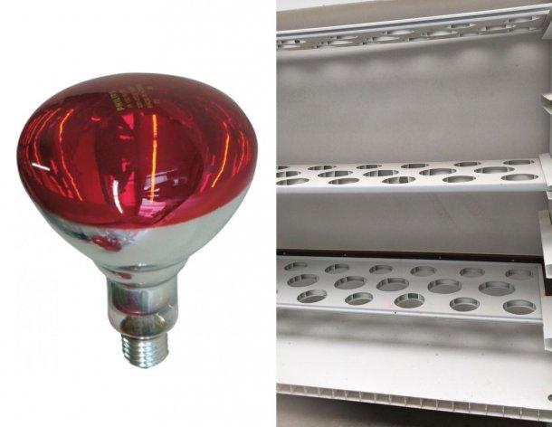 Foto 3: Izquierda: as bombillas infrarrojas cuestan aproximadamente 9 euros / bombilla (https://www.3tres3.com/tienda/bombillas-y-protectores_44/). Derecha: Otro diseño del carro, éste con 3 pisos.