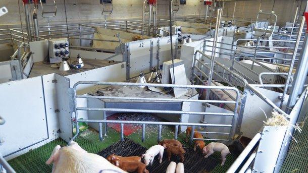 Imagen de la sala en que se están realizado las pruebas con plazas de maternidad libres. Foto: RotecnaPress.