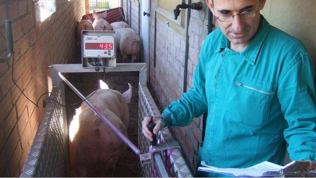 Enric Marco, veterinario de Marco Vetgrup.
