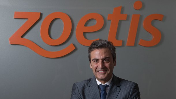 Félix Hernáez, director general y vicepresidente de Zoetis Europa del Sur.
