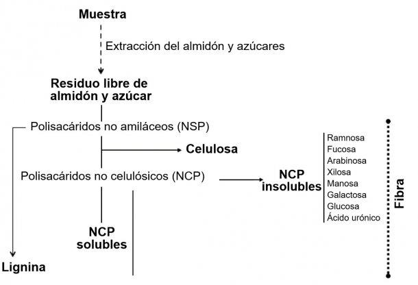 Figura 1. Determinación de polisacáridos no amiláceos, lignina y fibra mediante un procedimiento enzimático-químico. Knudsen (2014)