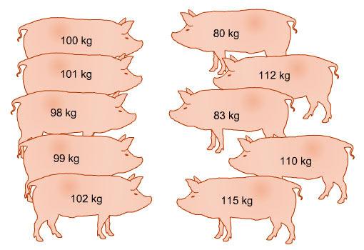 Variación del peso corporal