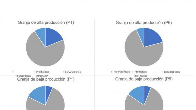 Gráfico 1. Distribución del tipo de cerdas, en parto 1 y 6, categorizados por los tipos de granjas planteados.