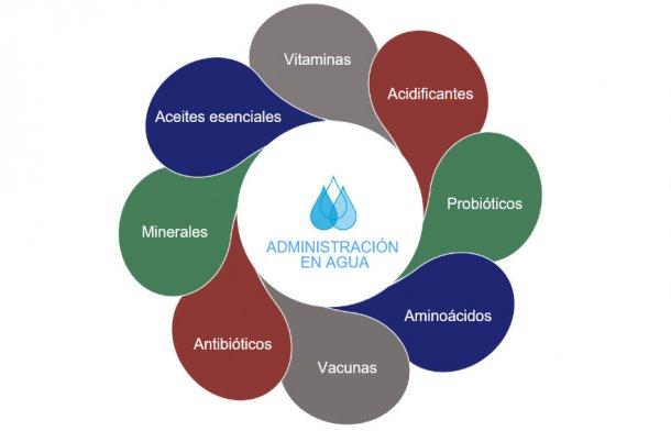 Figura1: Posibles opciones en el agua de bebida.