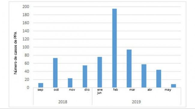 Nombre mensuel de sangliers positifs découverts en Belgique depuis le premier cas en septembre 2018 (source : ADNS au 08/07/2019).