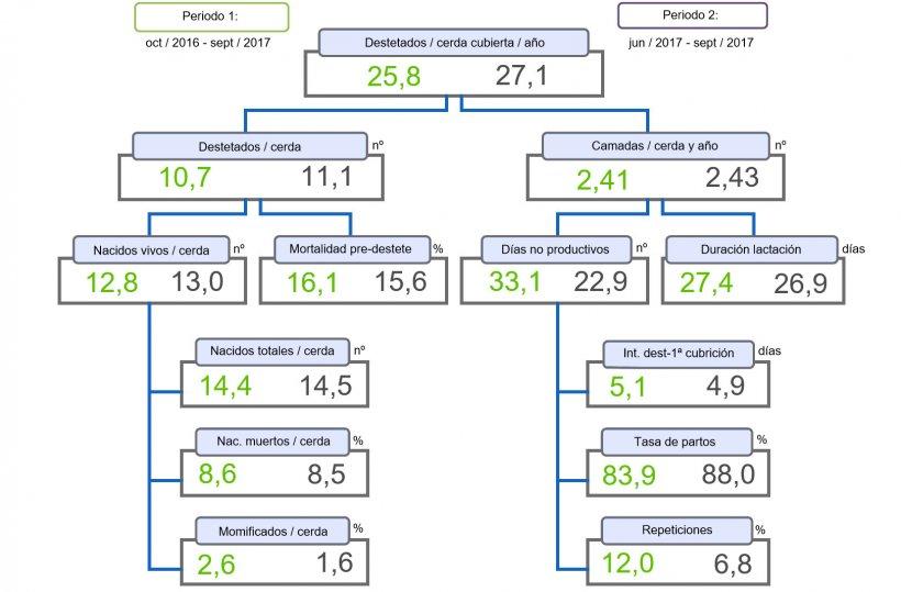 Figura 1. Árbol de productividad de lechones destetados/cerda cubierta y año, comparativo de dos periodos.