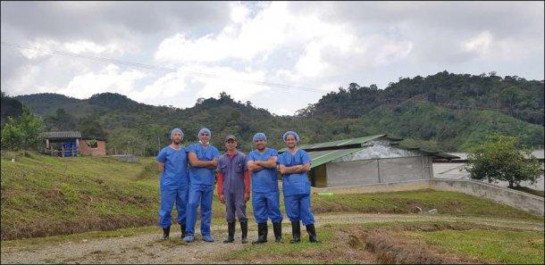 En la visita, nos acompañan Hector Marín (jefe de granja), Andrés Felipe Vallejo (técnico comercial de Porcigenes S.A.) Nelson Adrian Restrepo (Hypor Key Account Manager en Latinoamérica) y Carlos Martins (Departamento técnico Hypor).