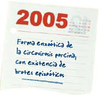 cirocvirus 2005