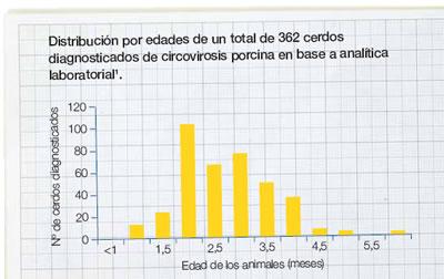 distribución circovirosis por edades