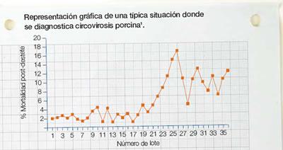 gráfica circovirosis
