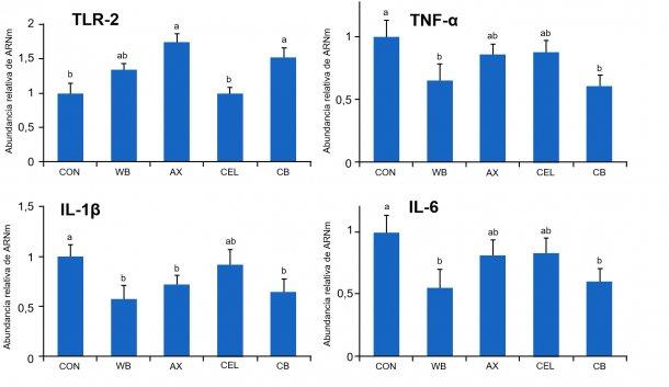 Figura 1. Efecto de distintas fuentes de fibra en la dieta sobre la expresión génica de los receptores TLR-2 y citoquinas pro-inflamatorias en el intestino de lechones destetados. CON: dieta control sin componentes fibroso WB: dieta suplementada con 10% de salvado de trigo AX: dieta suplementada con una cantidad de arabinoxilanos equivalente a la aportada por un 10% de salvado de trigo CEL: dieta suplementada con una cantidad de celulosa equivalente a la aportada por un 10% de salvado de trigo (CEL) CB: dieta suplementada con las mismas cantidades de arabinoxilanos y celulosa, conjuntamente. Medias con distinta letra difieren de forma estadísticamente significativa (p<0,05). Fuente: Chen y col., 2016