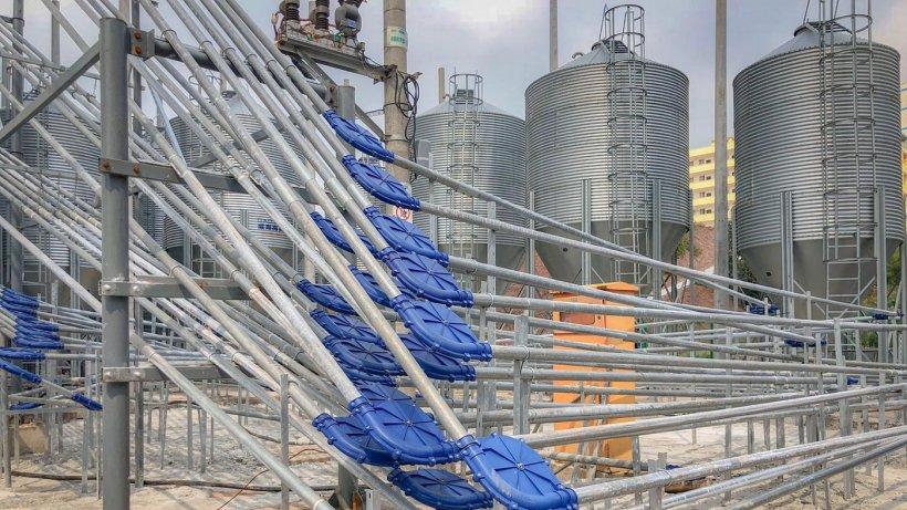 Foto 7: Sistema de cadena múltiple para distribución de pienso y elevación a los diferentes pisos. Fuente: Marcio Schmidt.