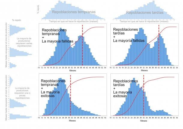 Gráfico 1. Se describen cuatro patrones diferentes de repoblación de la cabaña porcina dependiendo de cuándo se toman las decisiones de repoblación (temprano/tarde: parte superior del gráfico) y el tiempo necesario para restaurar totalmente la producción (uno-pocos/varios intentos: izquierda del gráfico). Las distribuciones de probabilidad acumuladas del tiempo de recuperación se muestran en rojo y las líneas rojas punteadas muestran la cantidad de meses necesarios hasta que se alcanza el 80% de la repoblación.