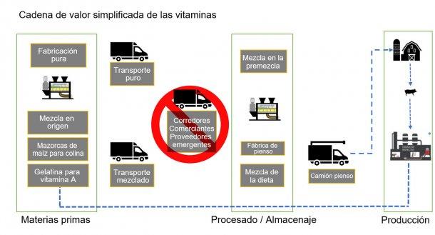 Figura 2. Descripción general de la cadena de valor de las vitaminas para la alimentación de animales.