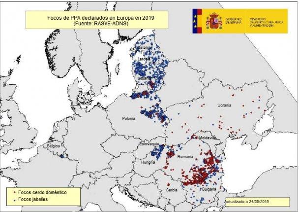 Mapa de los focos de PPA en la UE y Ucrania en 2019