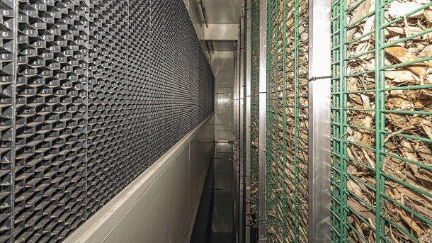 Después del lavado con agua, el aire se guía a través de la pared de filtro biológico.