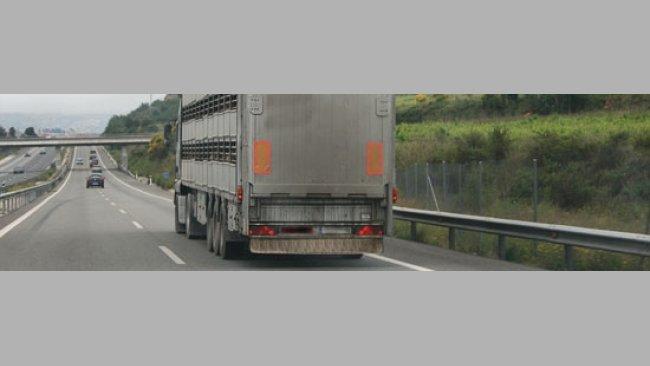 201003_transporte_matadero