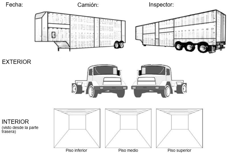 Foto 4: Ejemplo de gráficos como parte del check-list durante la auditoria visual.