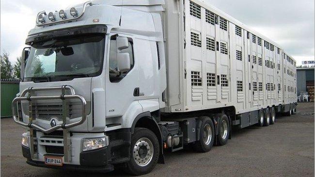 transporte animales covid-19