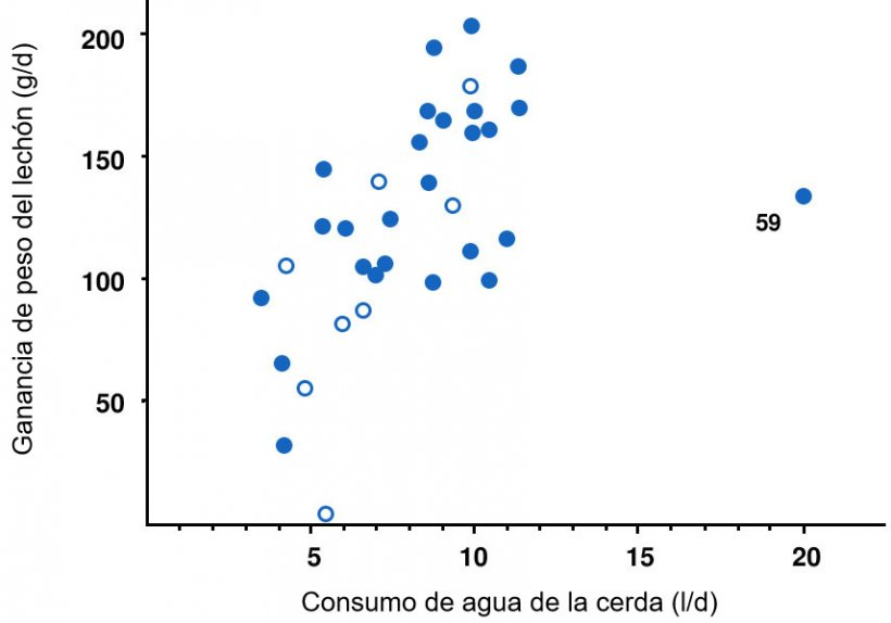 Ilustración 6. Relación entre el aumento de peso promedio de los lechones (g/d) durante los primeros 3 días después del nacimiento y el consumo promedio de agua de la cerda (l/d) en los mismos 3 días más el día del parto. Cada punto representa una de las 34 camadas con registros completos de aumento de peso y consumo de agua. Las cerdas con una temperatura corporal máxima de> 40,6 ° C (> 105 ° F) se muestran en círculos abiertos. La correlación es r = 0,53 basada en todos los datos, r = 0,68 omitiendo la camada 59 (el valor atípico a la derecha) y r = 0,65 omitiendo el valor atípico y las cerdas con temperatura corporal alta.