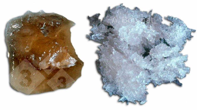 Figura 3. Cristales de sulfato amónico obtenidos mediante stripping y absorción de: A) purines de cerdo frescos; B) purines de cerdo digeridos anaeróbicamente. Fotos gentileza de A. Bonmatí (IRTA).