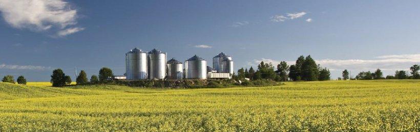 Imagen 2. Fábrica de piensos en Norteamérica. Fuente ANACAN.