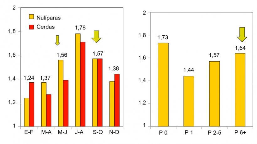 Abortos según la estación del año y según ciclo de la cerda (Koketsu, 2015)