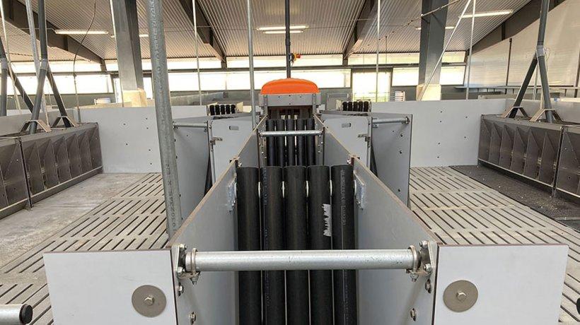 Centro: Puerta de salida de TriSortpro, el comedero automático DryWet a la izquierda y a la derecha. Los tubos negros impiden que los cerdos regresen a la estación.