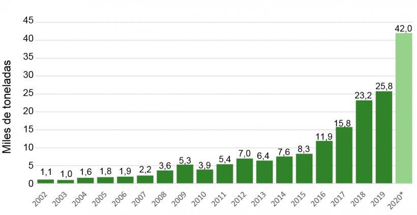Gráfico Nº 4.Exportaciones. Fuente: Datos de ADUANA – Año 2002 proyectado.