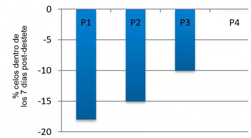 Imagen 3. Efecto del ciclo sobre el porcentaje de cerdas que expresan el celo dentro de los primeros 7 días post-destete en verano en comparación con la primavera (adaptado de Belstra y otros, 2004)