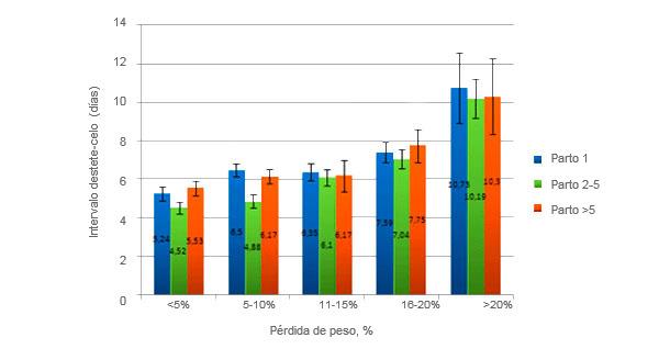 Imagen 2. Pérdida de peso de las cerdas según el número de parto. Thaker, M.Y.C., Bilkei, G. (2005).
