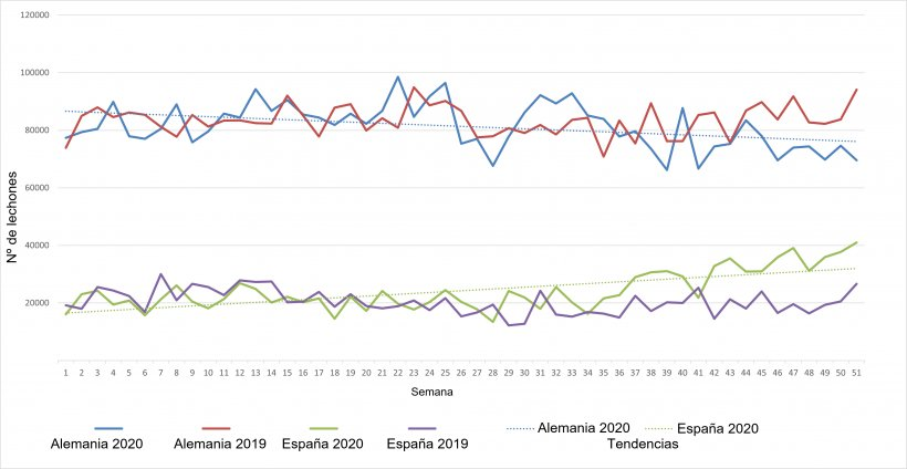 Evolución semanal de las exportaciones neerlandesas de lechones hacia Alemania y España para 2019 y 2020.