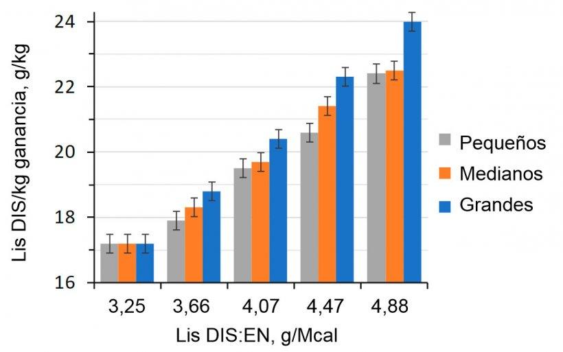 Figura 1. Efecto de la ratio lisina-energía de la dieta en cerdos de engorde (28-63 kg PV) clasificados según su peso inicial (Aymerich et al., 2020).