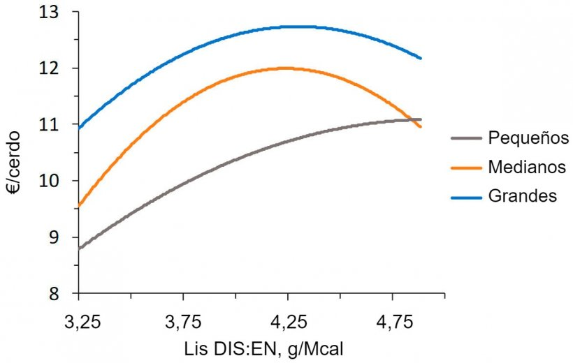 Figura 2. Modelización económica (IOFFC) del efecto de la ratio lisina-energía en cerdos de engorde (28-63 kg PV) clasificados según su peso inicial (a partir de Aymerich et al., 2020)