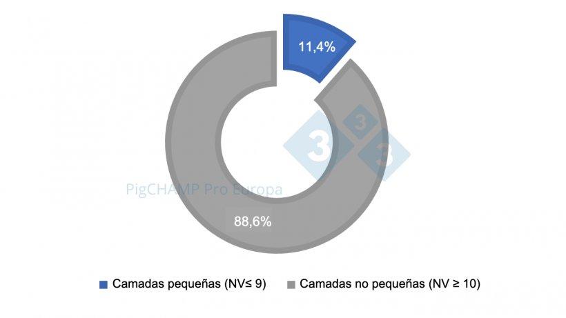 Gráfico 1. Distribución porcentual de las camadas según tamaño, 2018-2019.