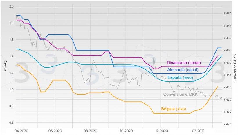Gráfica 1. Evolución del precio del cerdo en Alemania, España, Dinamarca y Bélgica.