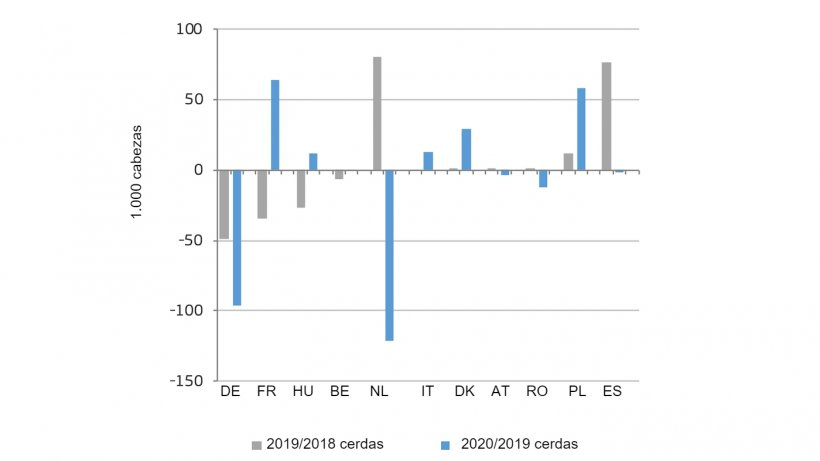 Cambio en el número de cerdas reproductoras en los principales países productores de la UE. Fuente:DG Agricultura y Desarrollo Rural, basado en Eurostat.
