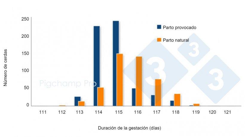 Gráfica 3. Comparativa de la duración de la gestación entre parto provocado a los 114 días y parto natural en una granja específica (¿Nos están pidiendo las cerdas el 3tres4? 2/2).