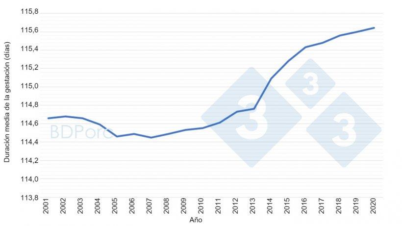 Gráfica 2. Duración media de la gestación de las cerdas en España desde 2001 a 2020. Fuente: BDPorc.