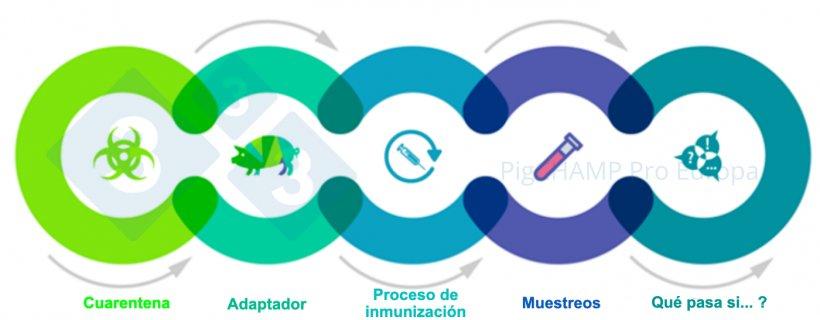 Figura 1. Aspectos claves interconectados que se deben de conocer antes de la visita.
