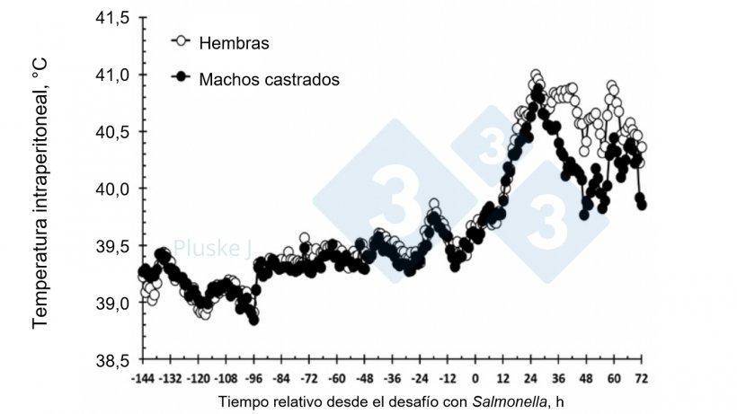 Figura 2. Efecto de ser una hembra o un macho castrado en la respuesta de la temperatura intraperitoneal a un desafío oral con Salmonella typhimurium. Hubo una interacción sexo-tiempo (P < 0,001) en la que las hembra tubieron una mayor temperatura que los cerdos castrados entre las 36-63 y a las 72 h tras el desafío (Burdick Sanchez et al., 2017).