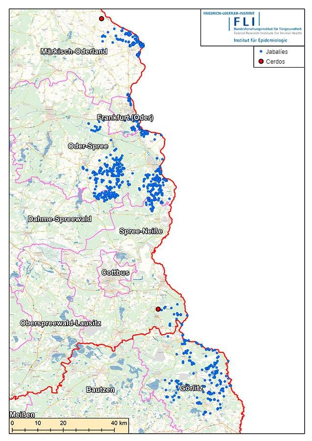 Mapa de casos de PPA en Alemania (a 16 de julio de 2021). Fuente: FLI