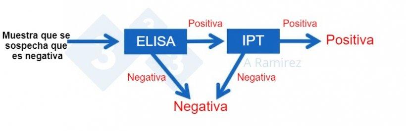 Figura 3. Diagrama que demuestra el uso de PPA IPTcomo prueba confirmatoria para muestras que salen inesperadamente positivas a PPAmediante ELISA. Una muestra presuntamente negativa que da un resultado negativo en ELISA se considera negativa. Si esta muestra da inesperadamente un resultado positivo, entonces se puede realizar una PPA IPT como prueba confirmatoria. Es decir, si la prueba de IPT es positiva, se confirma que la muestra es positiva. Si la prueba de IPT es negativa, asumiremos que fue un falso positivo siempre que la PCR también sea negativa para confirmar que no hay infección reciente.