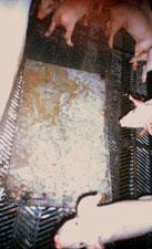 Se colocan planchas sobre los slats de plástico