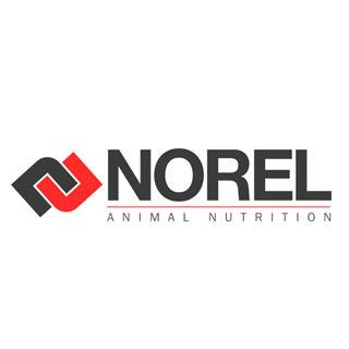 NOREL, S.A.