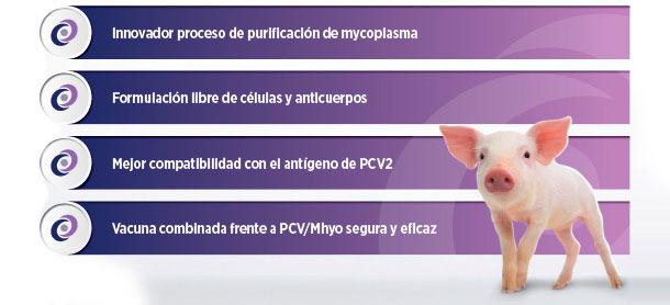 Innovador proceso de purificación de mycoplasma