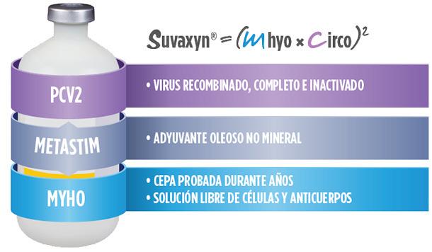 Suvaxyn vacuna frente a Mhyo y Circo